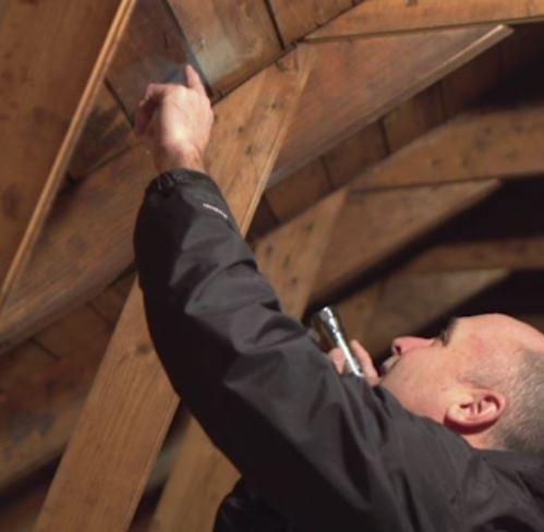 Inspect your attic for water stains and wet insulation, as these can be signs of roof leaks. Photo provided by CertainTeed.