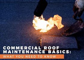 Commercial Roof Maintenance Basics: What You Need To Know