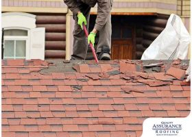Damaging Debris: 3 Worst Offenders for Your Roof